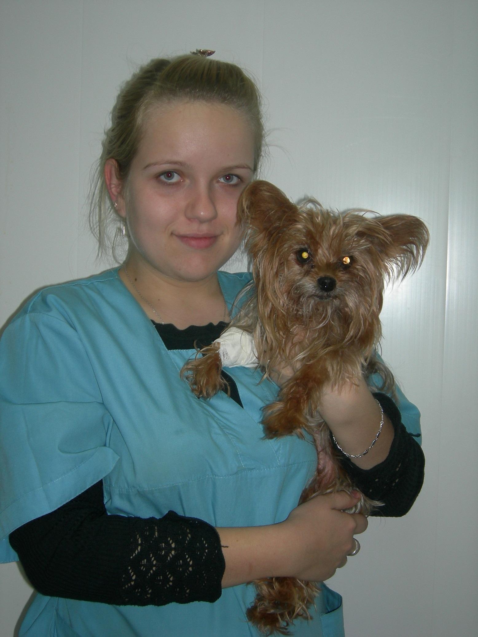 Рейтинг ветеринарных клиник